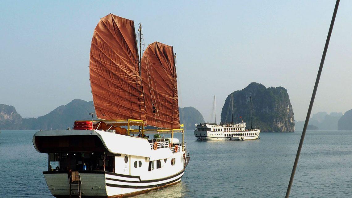 6 activités à faire lors d'une croisière en baie de Bai Tu Long