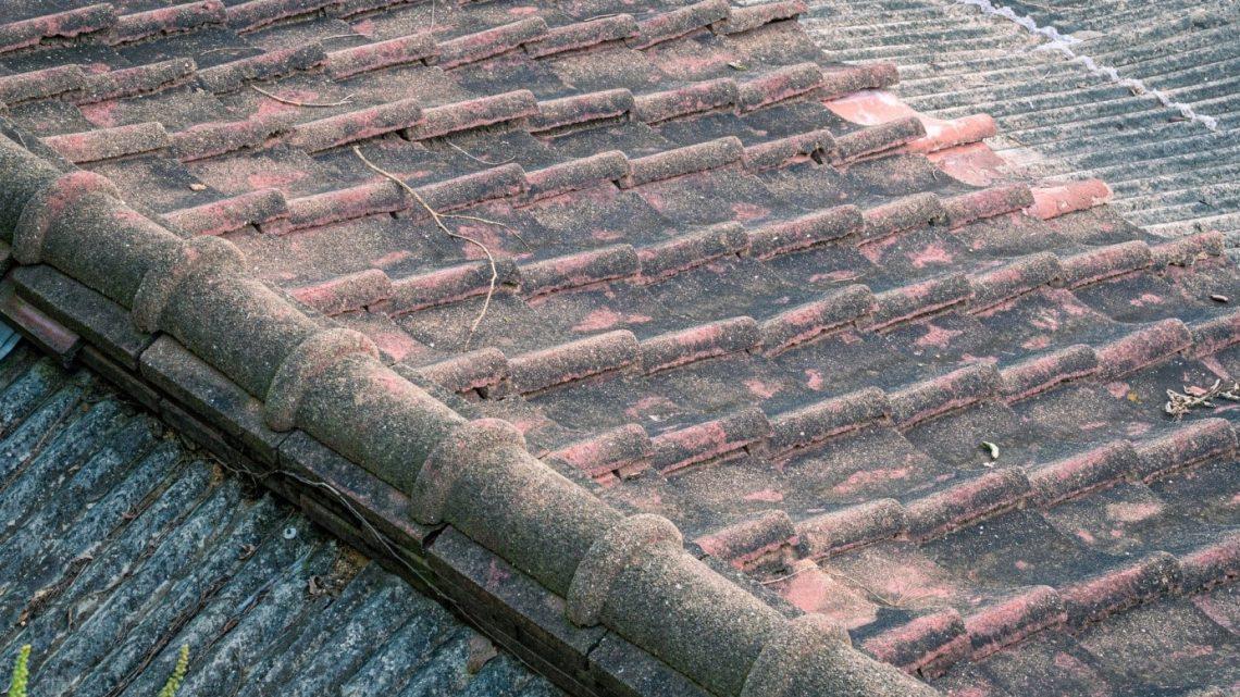 Astuces pour nettoyer la toiture de manière efficace